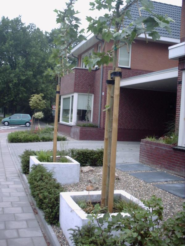 bornsestraat (6)