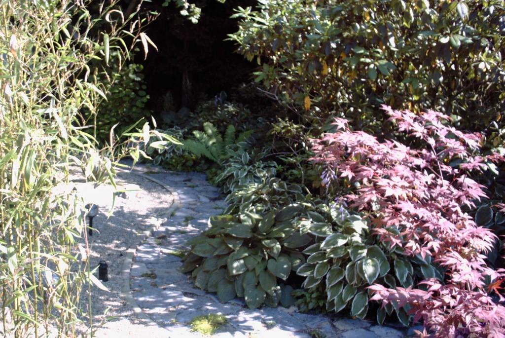 natuurlijke tuin (16)