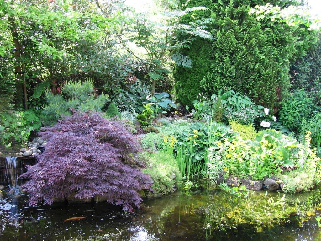 natuurlijke tuin (7)