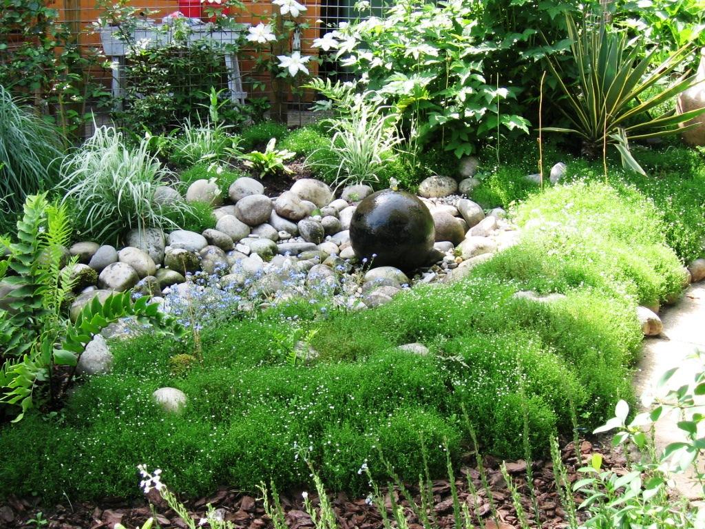 natuurlijke tuin (8)