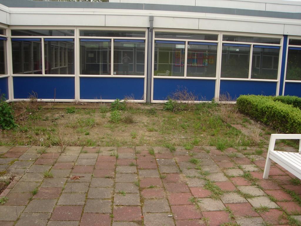 patio (1)
